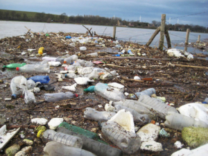 Recycled-Island-Detritus